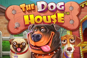 รีวิวเกมสล็อต The Dog House Megaways